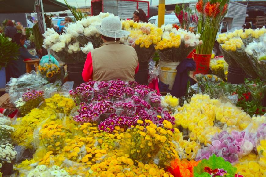 Sin pétalos ni rosas: explotación en la industria de lasflores